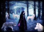 The Winter Howl