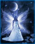 Fairy Of Twilight