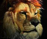 Lion portrait, painting.