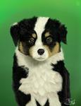 Dog portrait  1 by ForsThenebriss