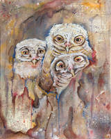 The Owls Are Not What They Seem VI
