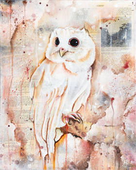 The Owls Are Not What They Seem VII