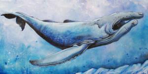 Whalesign 2