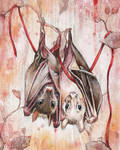 Entwined Bats