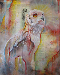 The Owls Are Not What They Seem XI by bedowynn
