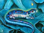 Sacred Salamander
