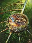Angels' Nest