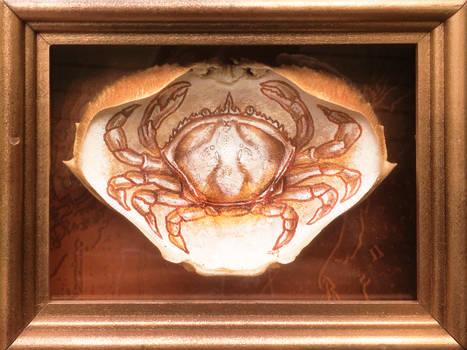 Crab On Crab
