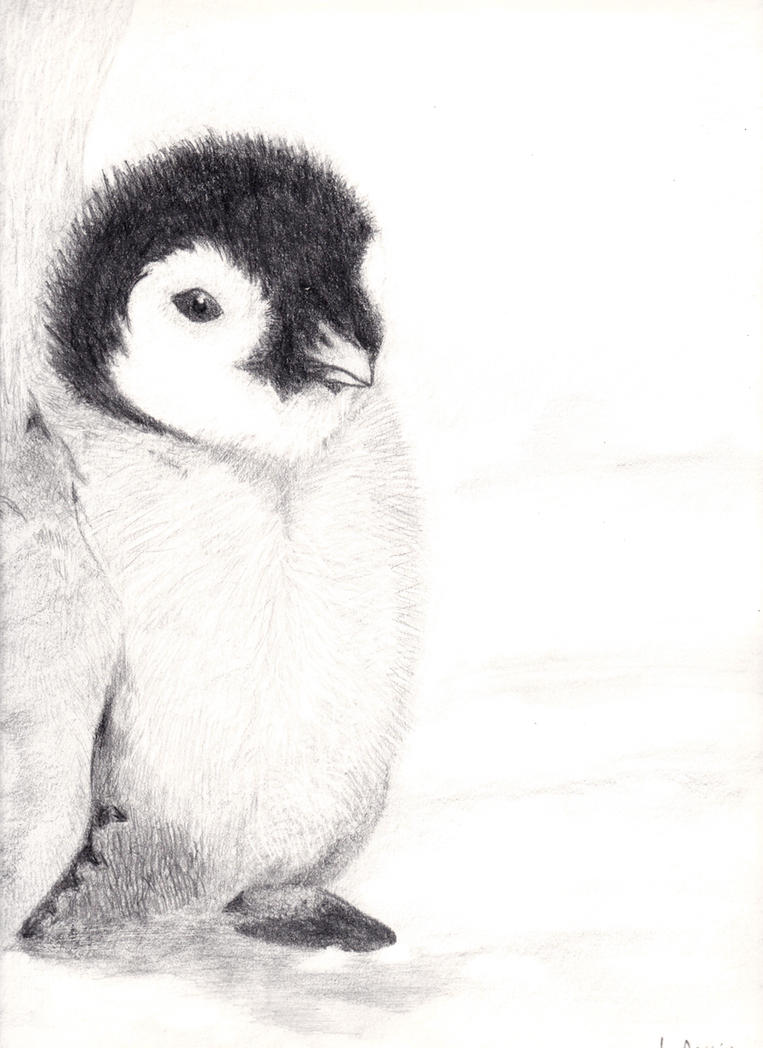 Baby Penguin Drawing by PathofTheAwesomePie on DeviantArt