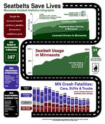 MN Seatbelt Infographic #2 by tgau