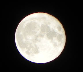 September coof moon
