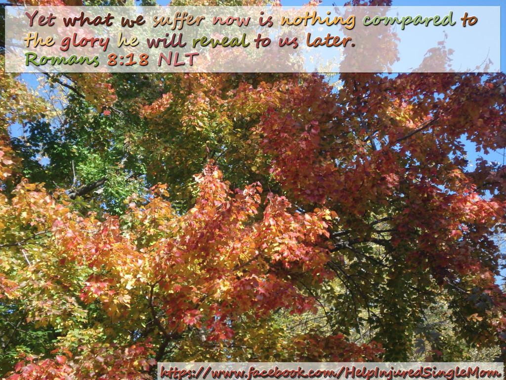 Romans 8:18 NLT by neice1176