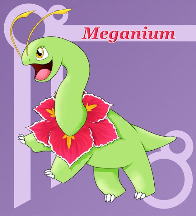 Meganium by South-Polaris