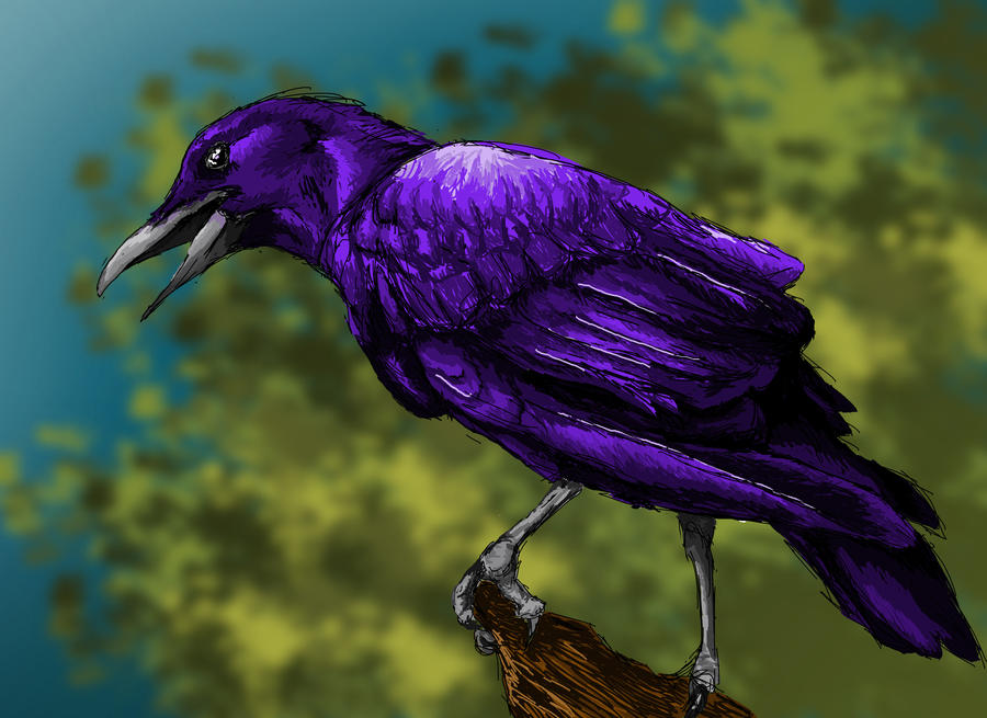 Purple Crow by Picatso1