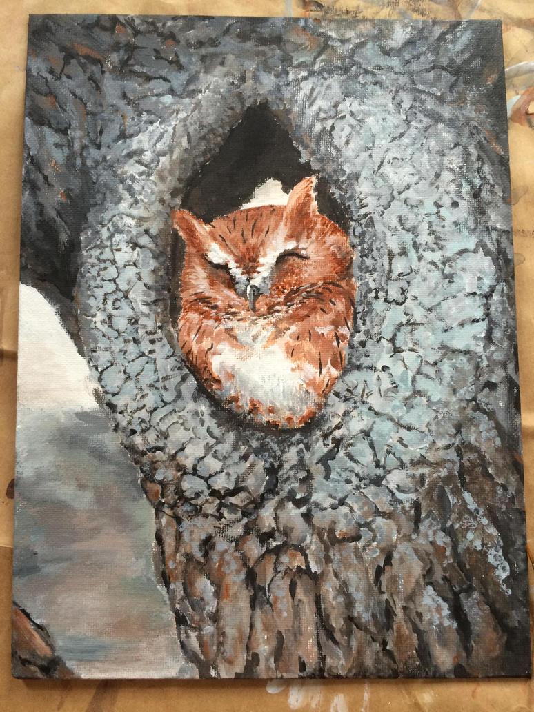 Screech Owl by Picatso1