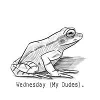 Frog Wednesday 81
