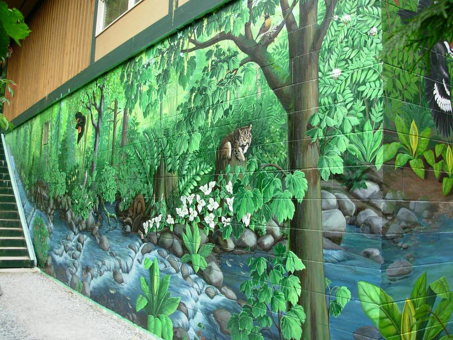 Hyde Creek Nature Murals By Artist Kim Hunter On Deviantart