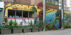 Coast Salish Community Mural Robson and Denman