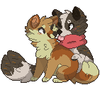 . together . by foxpets