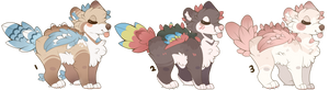 bearie adopts auction closed