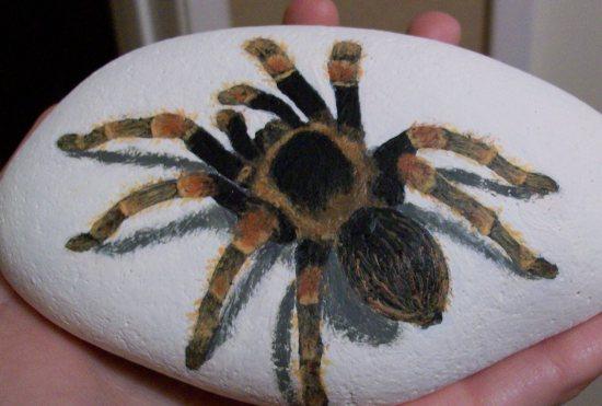 Hand painted tarantula on rock by TinyAna