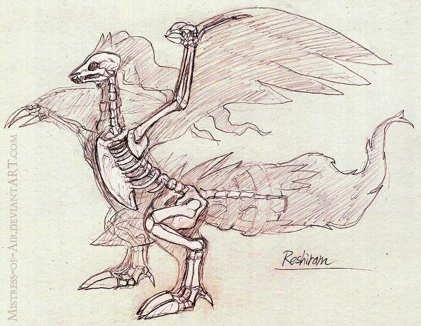 Reshiram Skeleton Study by Sysirauta