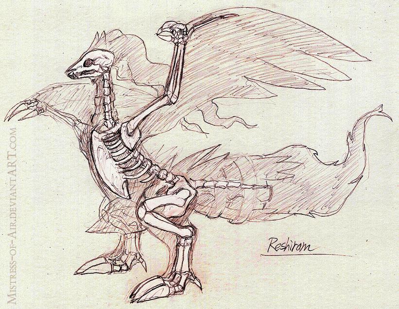 Reshiram Skeleton Study by Sysirauta