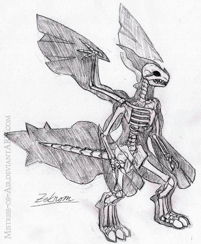 Zekrom Skeleton Study by Sysirauta