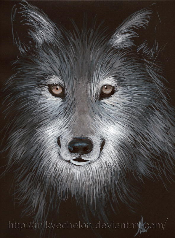 Wolf by Mikyechelon