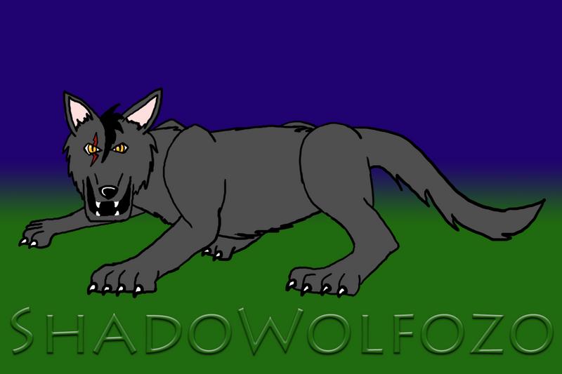 ShadoWolfozo ~ Talon Who_I_am_by_ShadoWolfozo