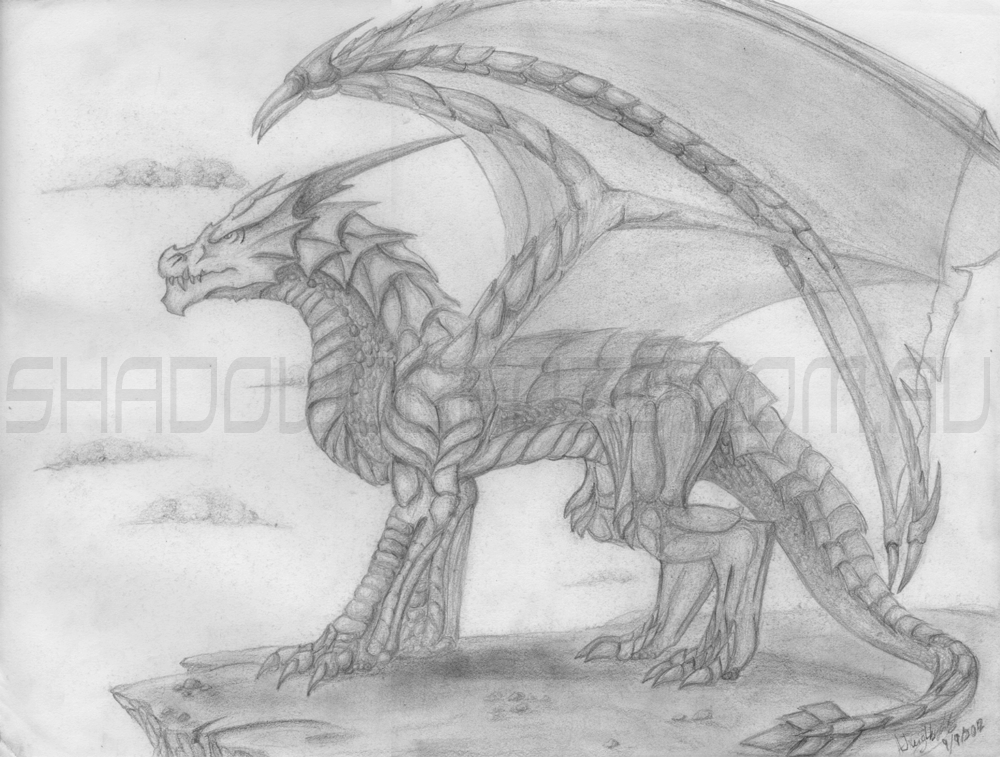 Really good drawings of dragons