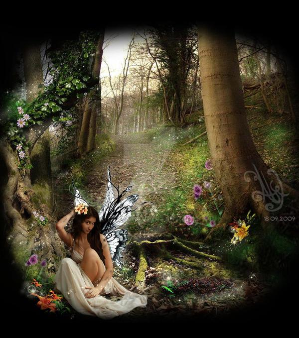 El bosque de las mil ilusiones by Ditza