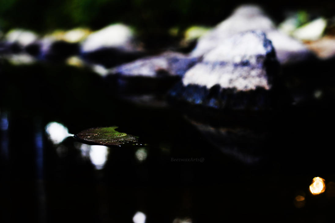 LillyPad by BottleOfHell