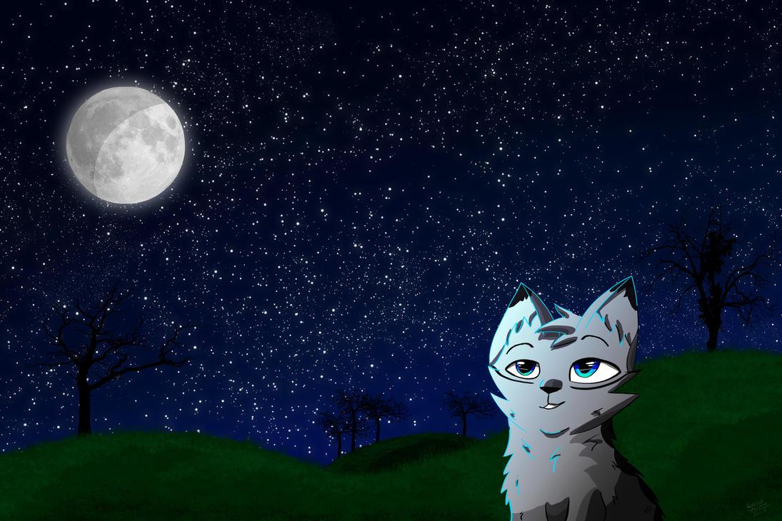 Star Gazing | maybe a speedpaint? by SnowOwO