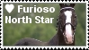 Furioso North Star by BlueHors