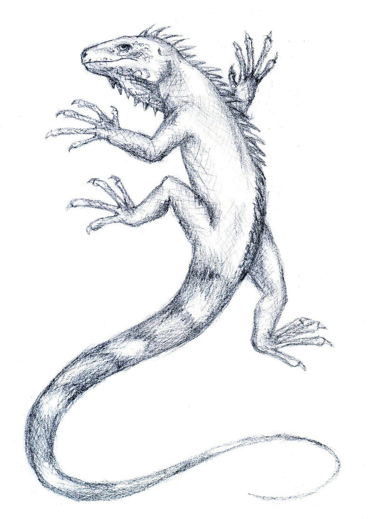 [RYSUNKI]- czyli mini Deviant Saf Iguana_by_FanDragonBall