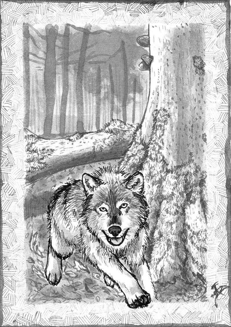 [RYSUNKI]- czyli mini Deviant Saf Ink_wolf_by_fandragonball-d6cwrne