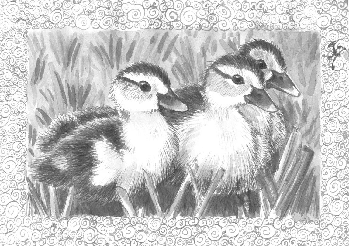 [RYSUNKI]- czyli mini Deviant Saf - Page 4 Ink_little_ducks_by_fandragonball-d7kbq2t