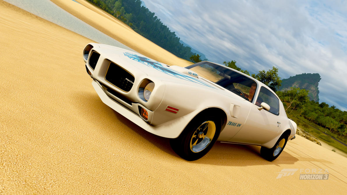1973 Pontiac Firebird Trans Am Sd 455 By Jerichoraccoon941 On Deviantart