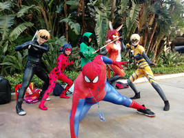 spiderman and team miraculous