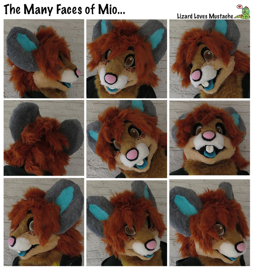 The Many Faces of Mio by TheGreenCoyote