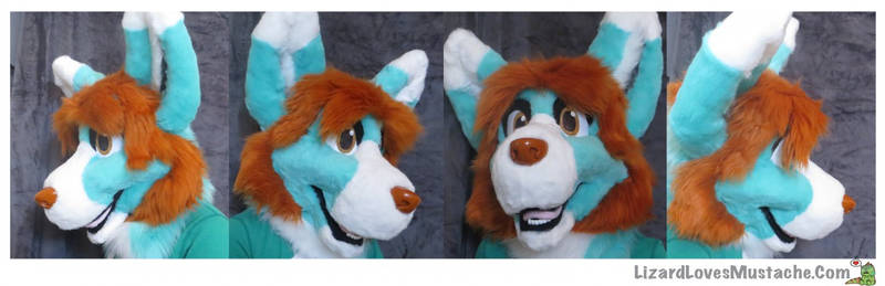 Aqua Pup *sold*