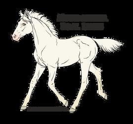 ID: A1398 - Nordanner Foal by Juzoka-Vargulf-Eqqus