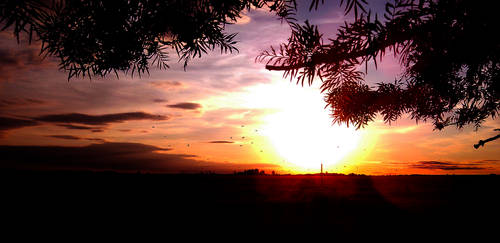Beautiful Farm Sunset by Juzoka-Vargulf-Eqqus