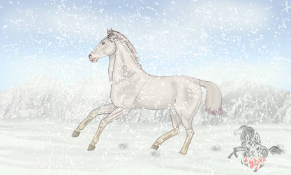 Running at the snow by Juzoka-Vargulf-Eqqus