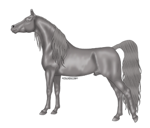 FREE Arabian Stallion Grayscale - READ DESCRIPTION by Juzoka-Vargulf-Eqqus