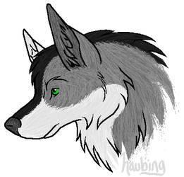 Wolf - White-Fang by haubing