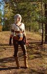 The Witcher 3: Wild Hunt, Cirilla