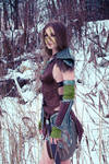 Skyrim, Aela the Huntress