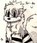 Fuzzy Arcanine c: